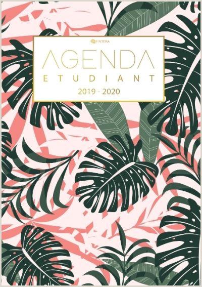 Agenda Etudiant 2019 2020 Calendrier de Ao t 2019  Ao t 2020 Agenda Semainier et Agenda Journalier Scolaire