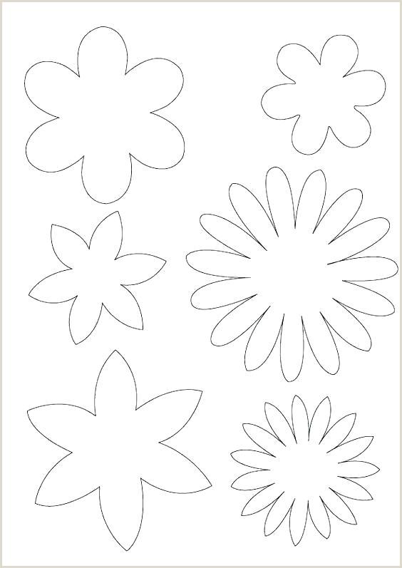 flower petal shape template