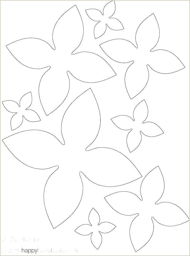 Small Flower Petal Template Printable Flowers Healthy