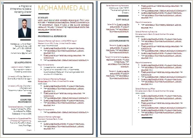 Format Of A Cv for Job Application In Sri Lanka 7 Blank Samples Elegant Free Printable Curriculum Vitae