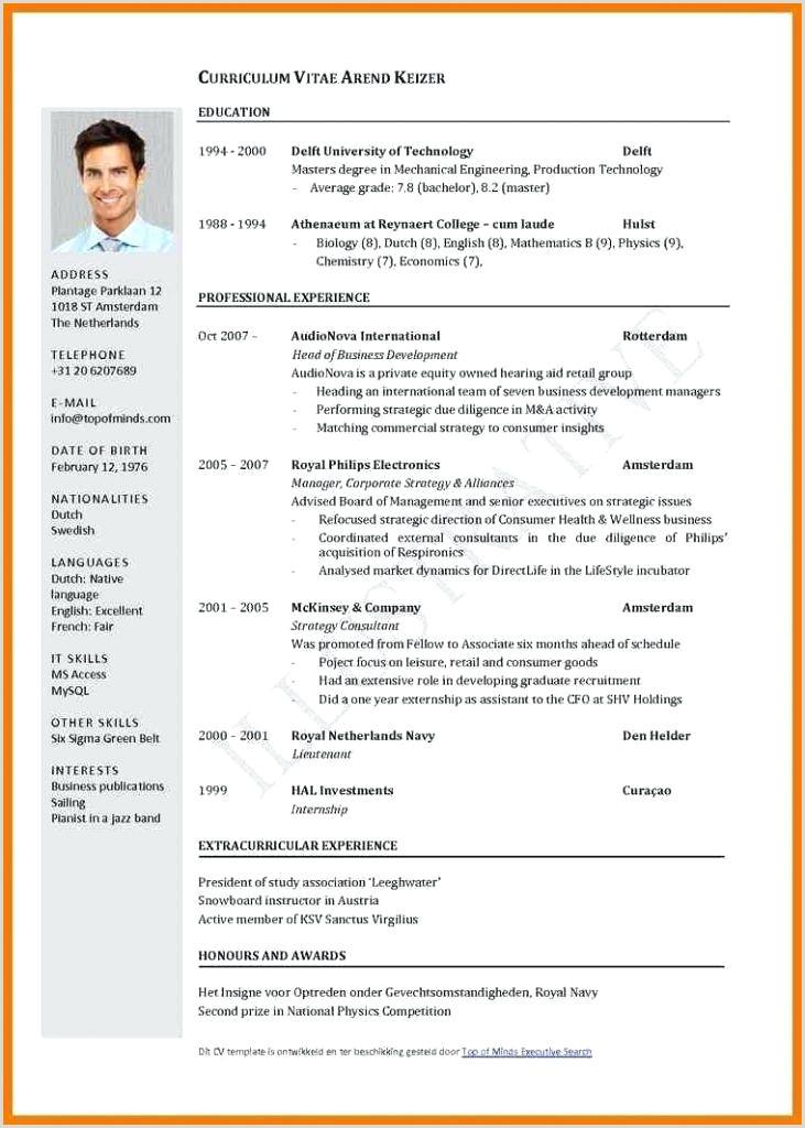 curriculum vitae template pdf