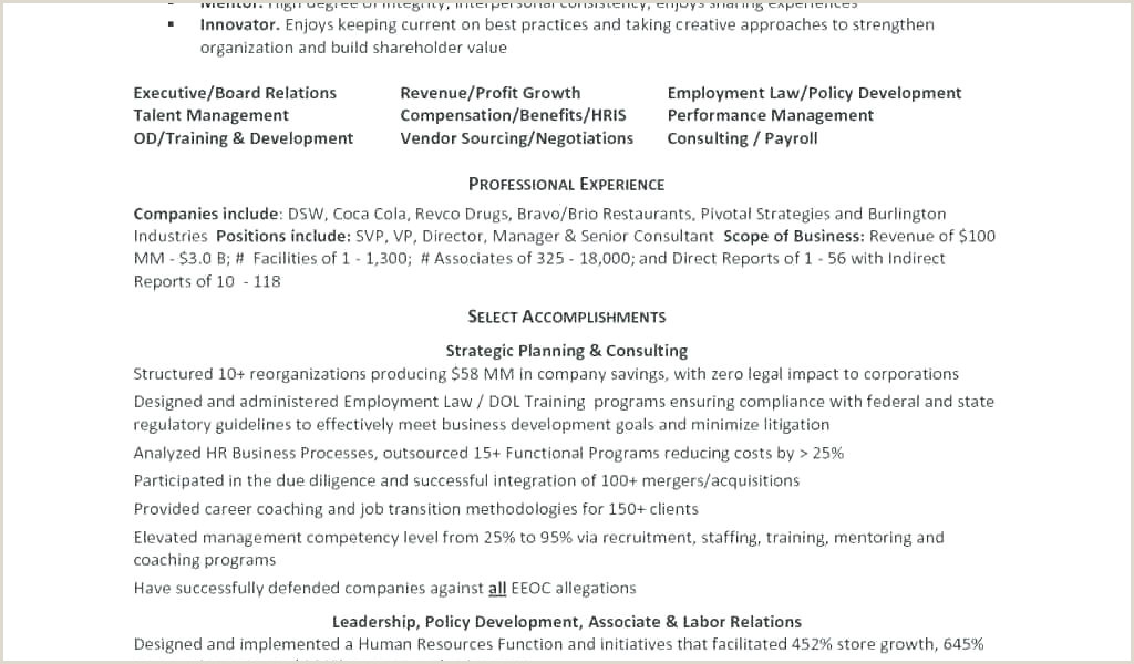Format Of A Professional Cv .doc Professional Cv Template Free