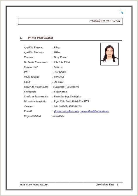 Formato Curriculum Vitae Para Rellenar Chile Curriculum Vitae Datos Personales Modelo De Curriculum Vitae