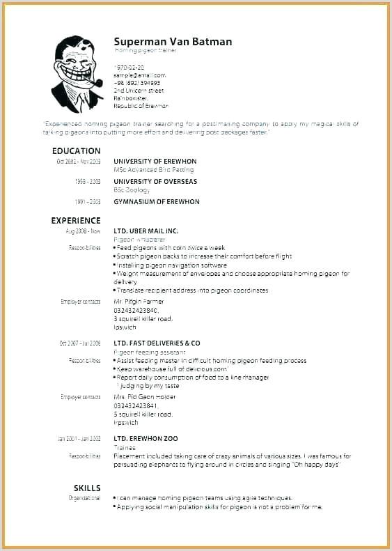 Formato Curriculum Vitae Para Rellenar Word 70 échantillon Cv formato Europeo