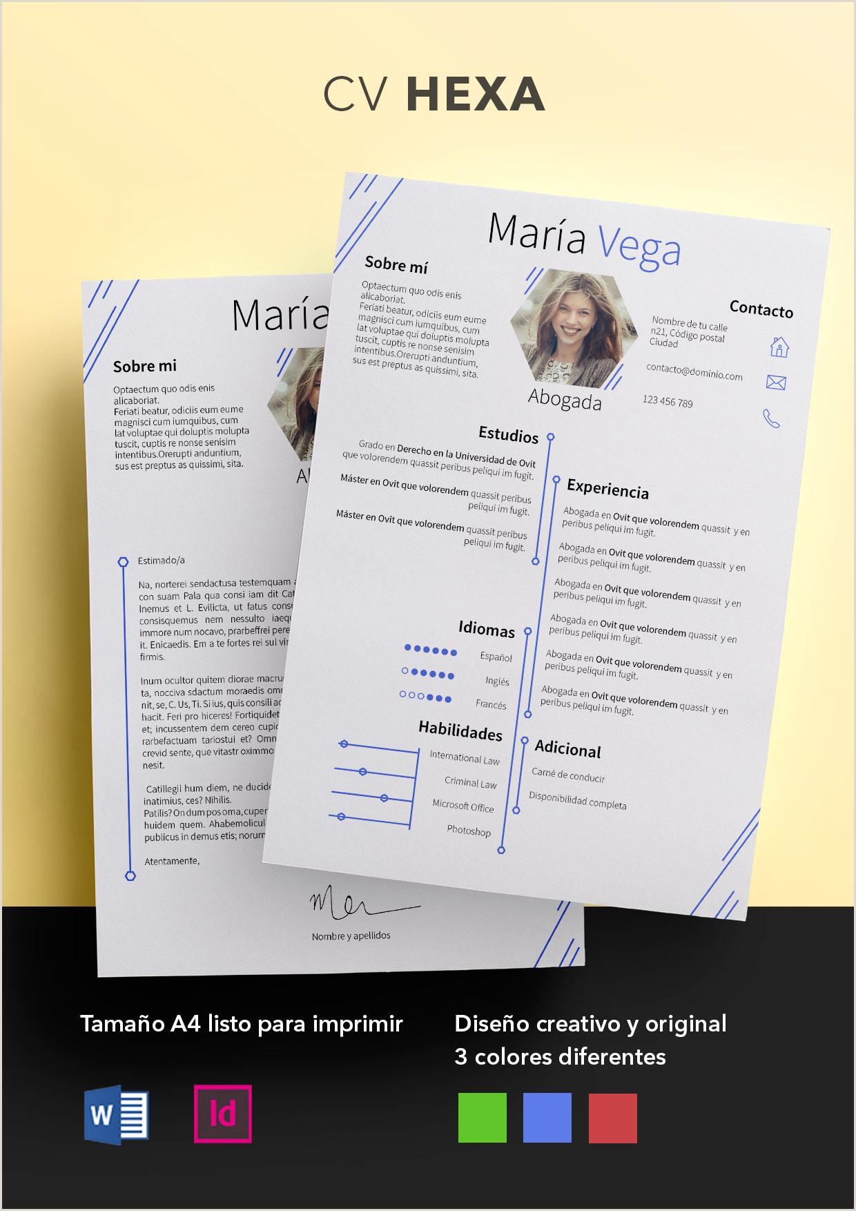 Formato De Curriculum Vitae Creativo Para Rellenar Currculum Vitae Modelo Hexa