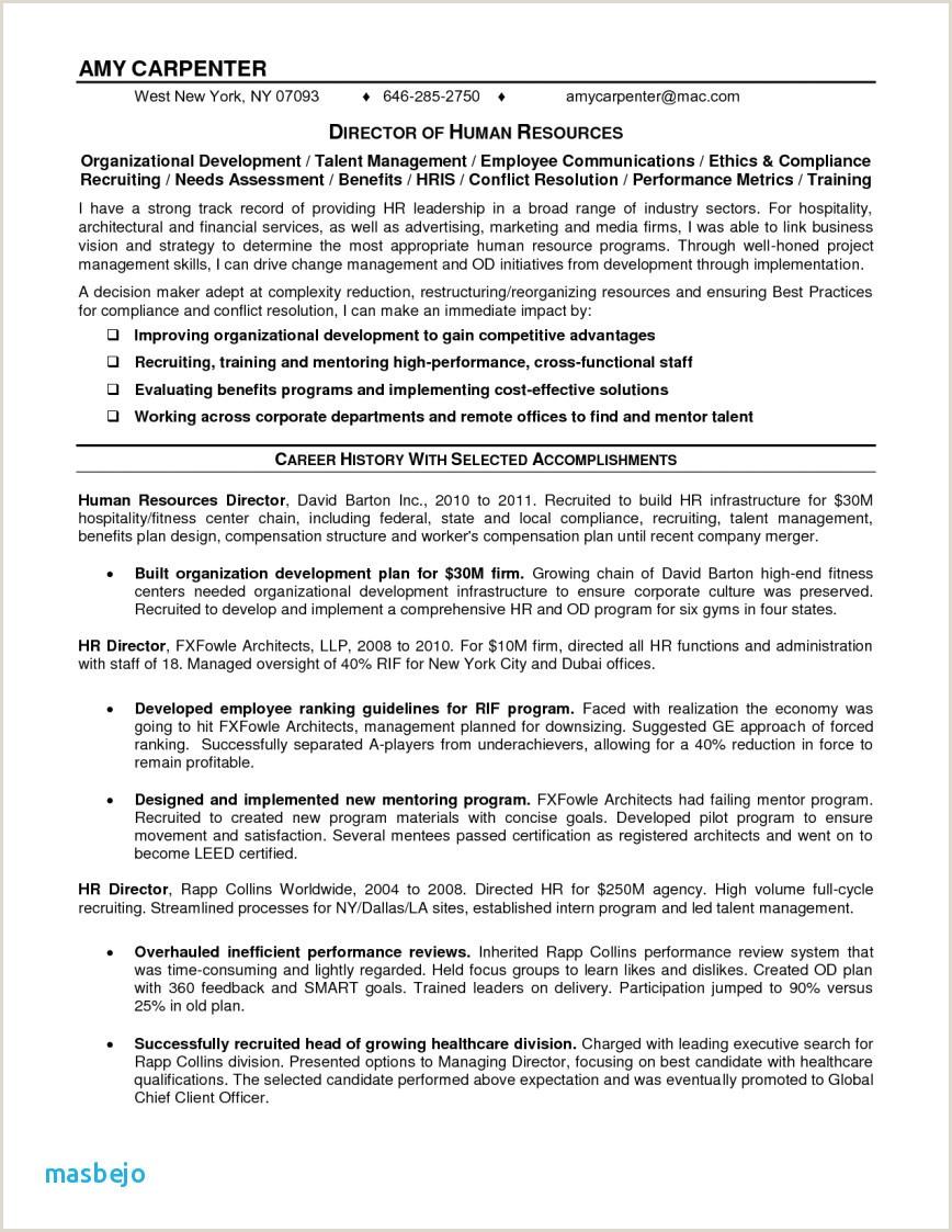 Formato De Curriculum Vitae Para Rellenar 2018 Curriculum Vitae Disponibilidad
