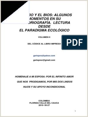 Formato De Curriculum Vitae Para Rellenar En Español El Libro Y El Bios 2
