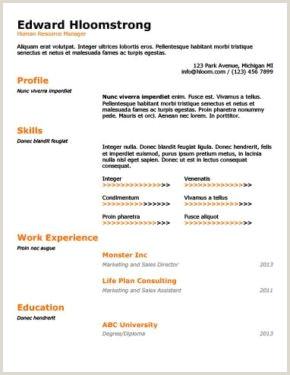 Formato De Curriculum Vitae Para Rellenar Pdf Más De 400 Plantillas De Cv Y Cartas De Presentaci³n Gratis