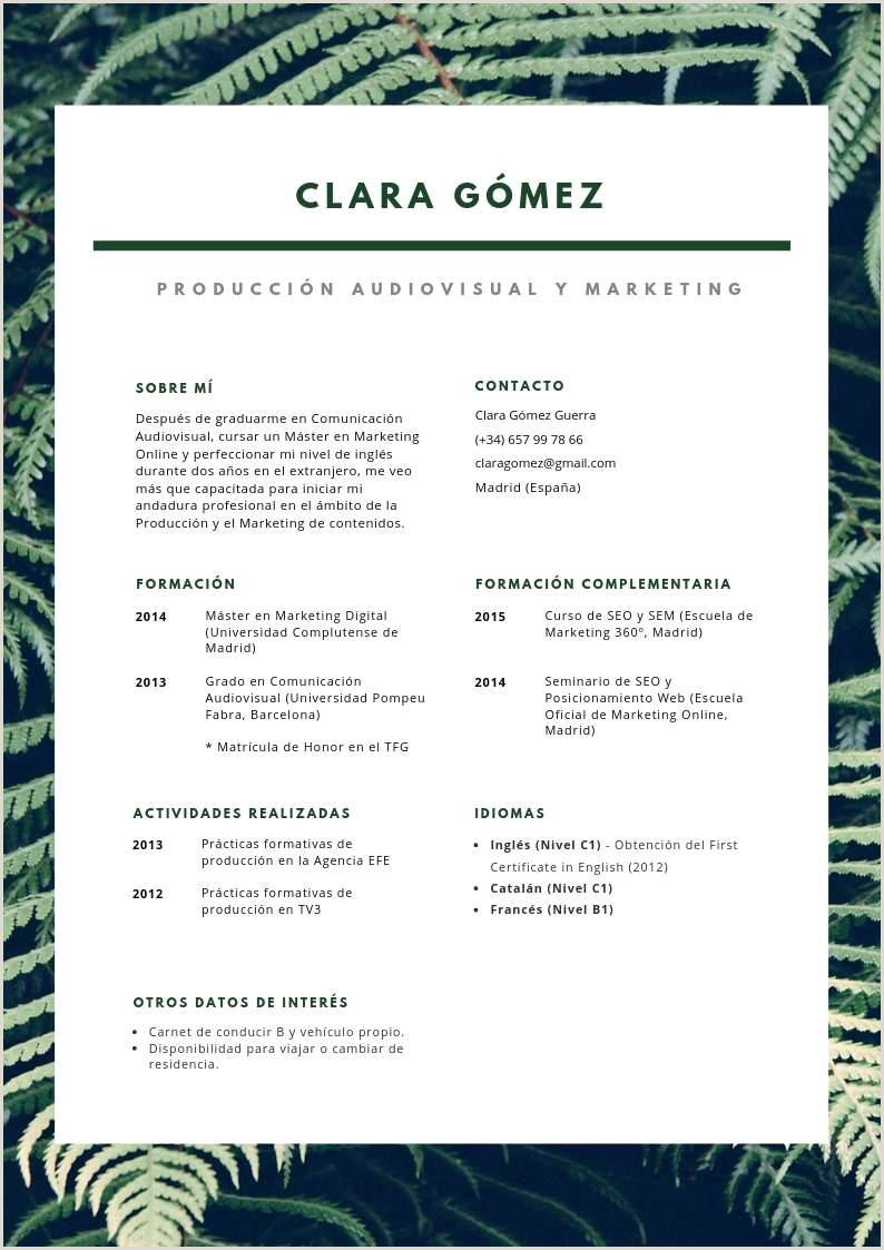 Formato De Curriculum Vitae Para Rellenar Sin Experiencia Curriculum Vitae Modelo social Plantillas De Currculum