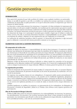 Gestion prevencion riesgos [] by Jose Manuel Perulero