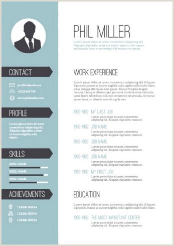 Formato De Hoja De Vida atractiva 11 Modelos De Curriculums Vitae 10 Ejemplos 21 Herramientas