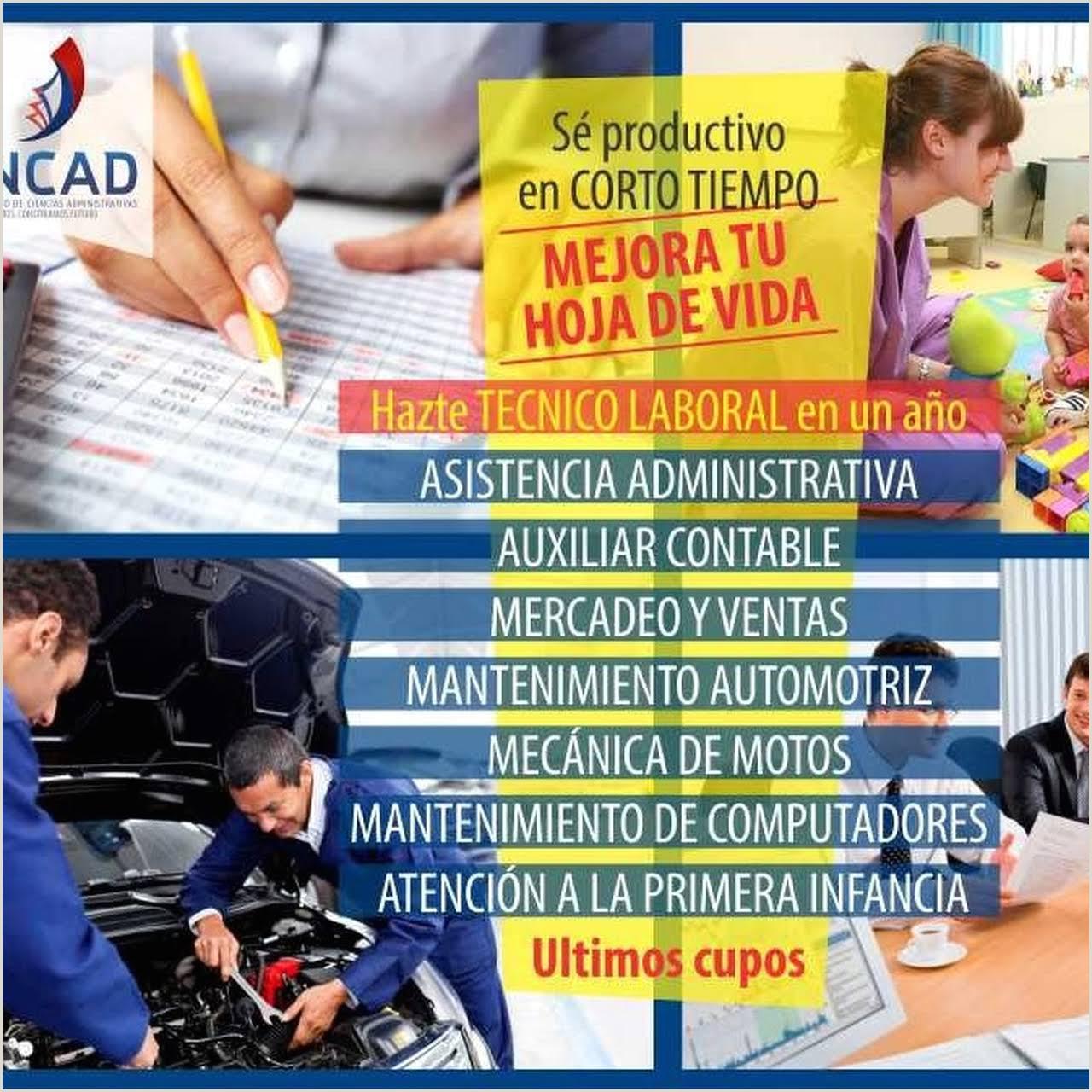 Formato De Hoja De Vida Auxiliar Contable Incad Instituto De Ciencias Administrativas Instituci³n
