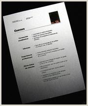 Formato De Hoja De Vida Clasico Vii O Presentar Su Hoja De Vida Página Web De
