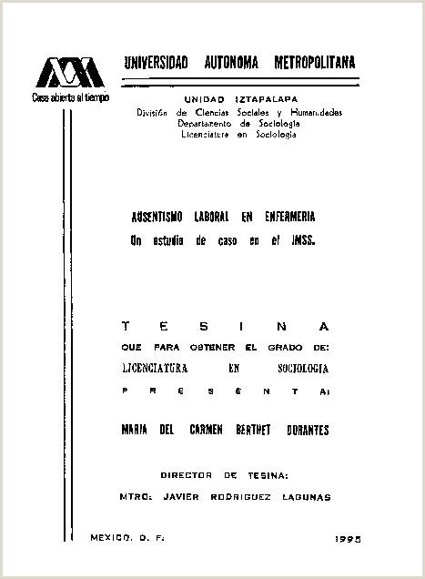 Formato De Hoja De Vida Doc Pdf Universidad Autonoma Metropolitana S I N A El Grado De