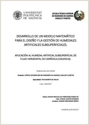 Formato De Hoja De Vida En Colombia Desarrollo De Un Modelo Matemtico Para El Dise'o Y La