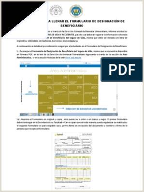 Formato De Hoja De Vida En Pdf Instructivo Para Llenar El formulario De Designacion Del