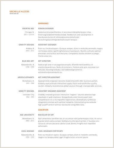 Formato De Hoja De Vida Facil 19 Plantillas De Cv Gratis Para Google Doc Download