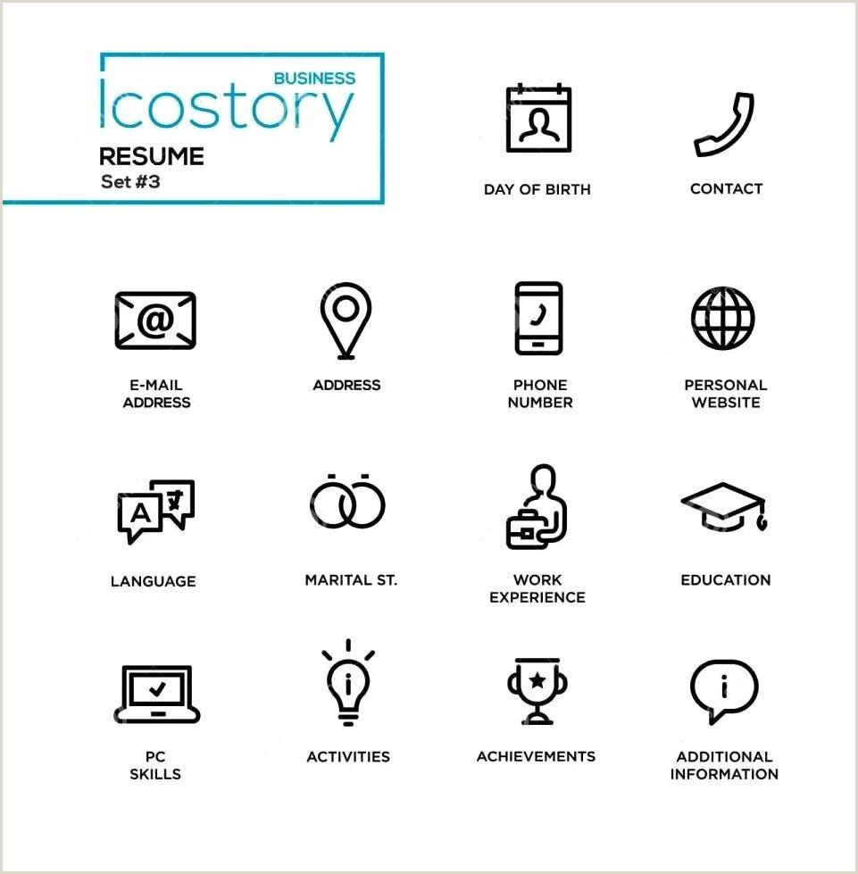 Iconos de currculum modernos Muestras gratis ejemplos y