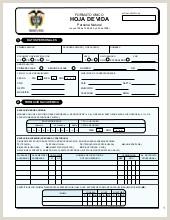 Formato De Hoja De Vida Gestion Publica Cam 4 Manual Ponencias