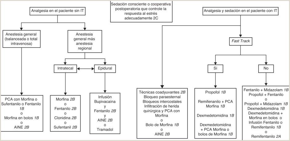 Formato De Hoja De Vida Gtc 185 Gua De Práctica Clnica Basada En La Evidencia Para El