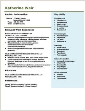 Formato De Hoja De Vida Ingeniero De Sistemas Más De 400 Plantillas De Cv Y Cartas De Presentaci³n Gratis