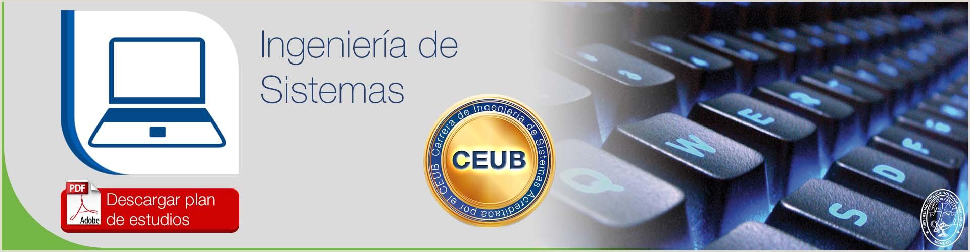 Ingeniera de Sistemas Universidad Cat³lica Boliviana San