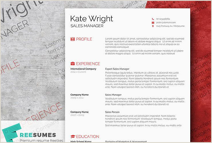 Smart Freebie Word Resume Template The Minimalist