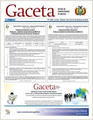 Formato De Hoja De Vida Juridica Gaceta Icial De Convocatorias by Cambio Peri³dico Del