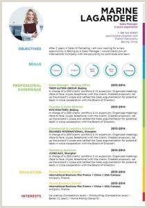 Formato De Hoja De Vida Llamativo 11 Modelos De Curriculums Vitae 10 Ejemplos 21 Herramientas