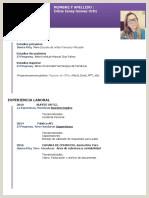 Formato De Hoja De Vida Minerva 1003 En Word Ceniss Yoro Cohorte 4