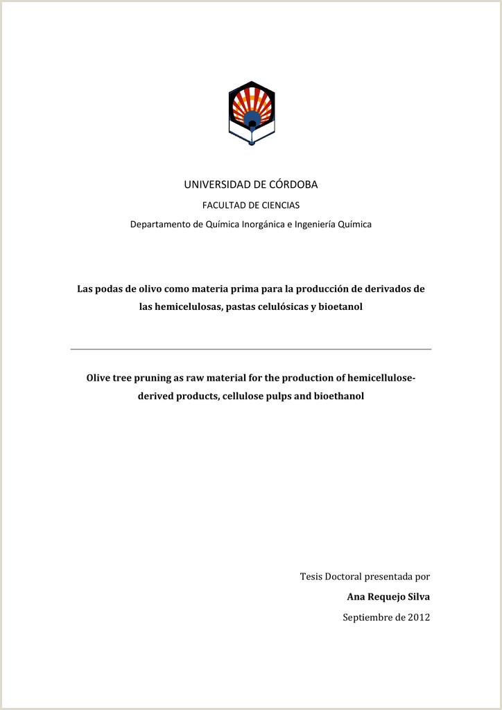 Formato De Hoja De Vida Minerva 1003 Pdf Pdf