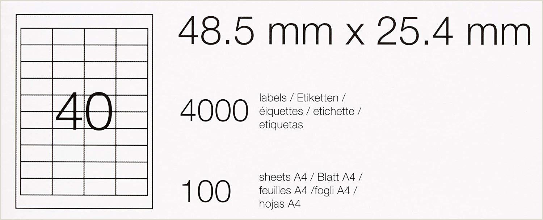 Formato De Hoja De Vida Unico Amazonbasics Etiquetas De Direcci³n Multiusos 48 5mm X