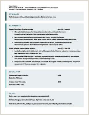 Formato De Hoja De Vida Unico Para Imprimir Más De 400 Plantillas De Cv Y Cartas De Presentaci³n Gratis