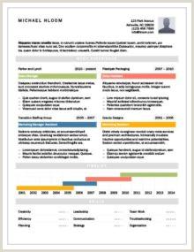 Formato Hoja De Vida Administrador 17 Plantillas De Cv Infográficos [ Descarga Gratuita ]