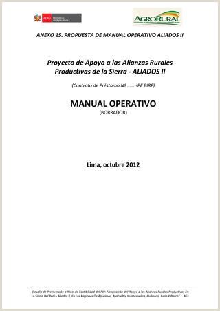 Estudio de Factibilidad Aliados II 2da Parte by AGRORURAL