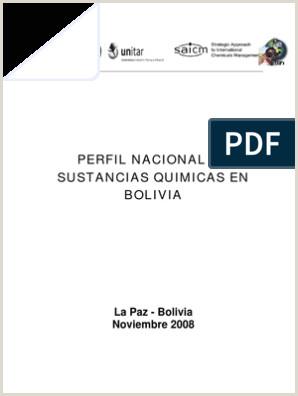 Formato Hoja De Vida Bolivia Perfil De Sustancias Quimicas En Bolvia