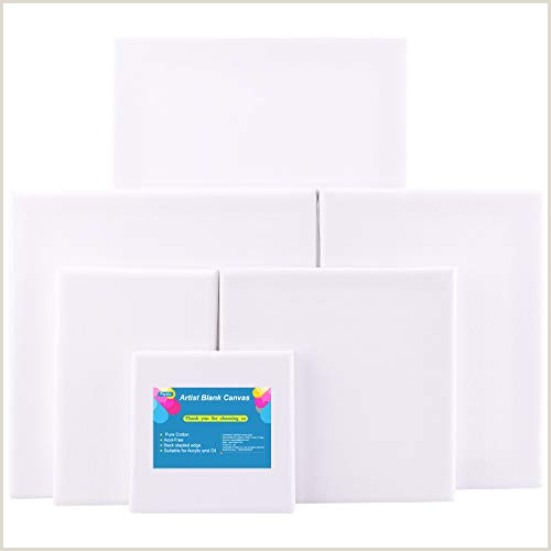 FEPITO 6 Set Artist Blank Canvas Assorted Size Art Canvas Frame Stretcher Acrylic Oil Water Painting Board