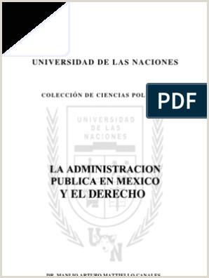 Formato Hoja De Vida De La Funcion Publica Persona Juridica Administracion Publica En Mexico Y El Derecho