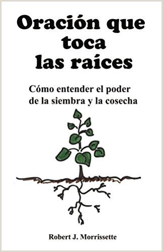 Formato Hoja De Vida Diseñador Grafico El Libro En Lnea Sin