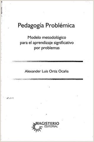 Formato Hoja De Vida Docente Pedagogia Problemica Modelo Metodologico Para El Aprendizaje