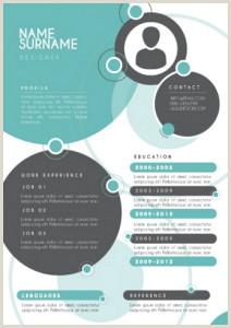 Formato Hoja De Vida En Word Sencilla 11 Modelos De Curriculums Vitae 10 Ejemplos 21 Herramientas