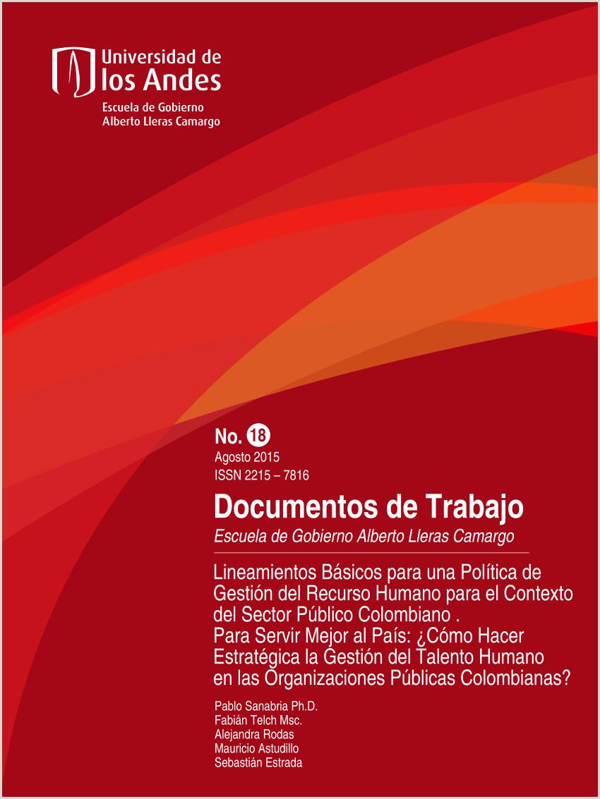 PDF Lineamientos Básicos para una Poltica de Gesti³n del
