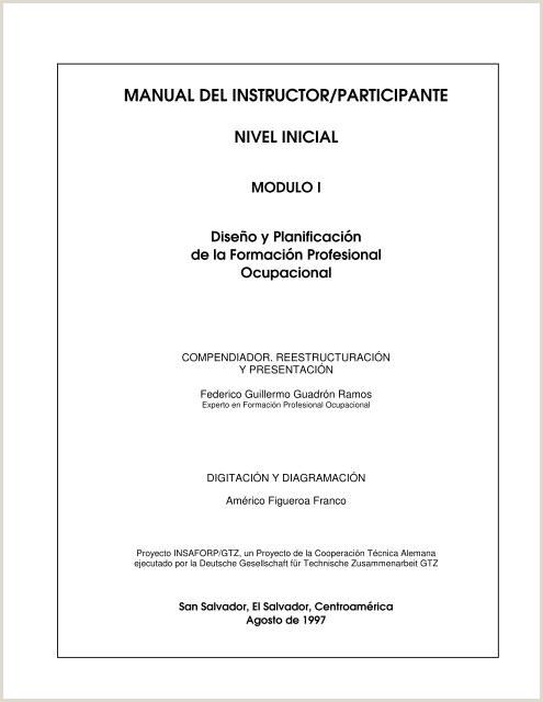 Formato Hoja De Vida Giz Manual Del Instructor Participante Insaforp