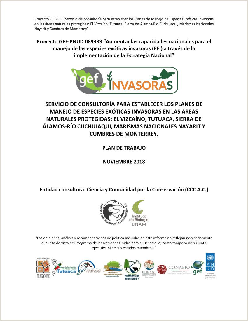 """Formato Hoja De Vida Giz Pdf Proyecto Gef Pnud """"aumentar Las Capacidades Nacionales"""