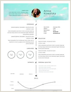 Formato Hoja De Vida Google 7 Meilleures Images Du Tableau Cv Design Design Resume En