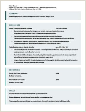 Formato Hoja De Vida Impresora Más De 400 Plantillas De Cv Y Cartas De Presentaci³n Gratis