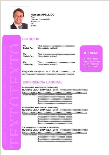 Formato Hoja De Vida Ingles Ejemplos De Hoja De Vida Modernos En Word Para Descargar