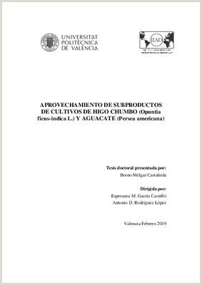 Formato Hoja De Vida Juan De Castellanos Aprovechamiento De Subproductos De Cultivos De Higo Chumbo