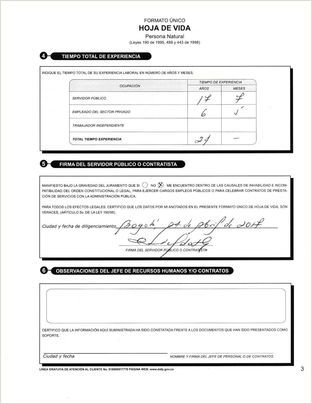 Formato Hoja De Vida Judicial Documentos Funci³n Pºblica