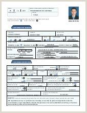 Formato Hoja De Vida Minerva 1003 Para Imprimir Hoja De Vida Mario Hernandez